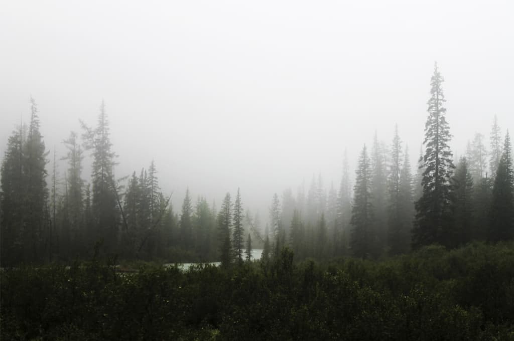 Переход до Нижнего Шавлинского озера