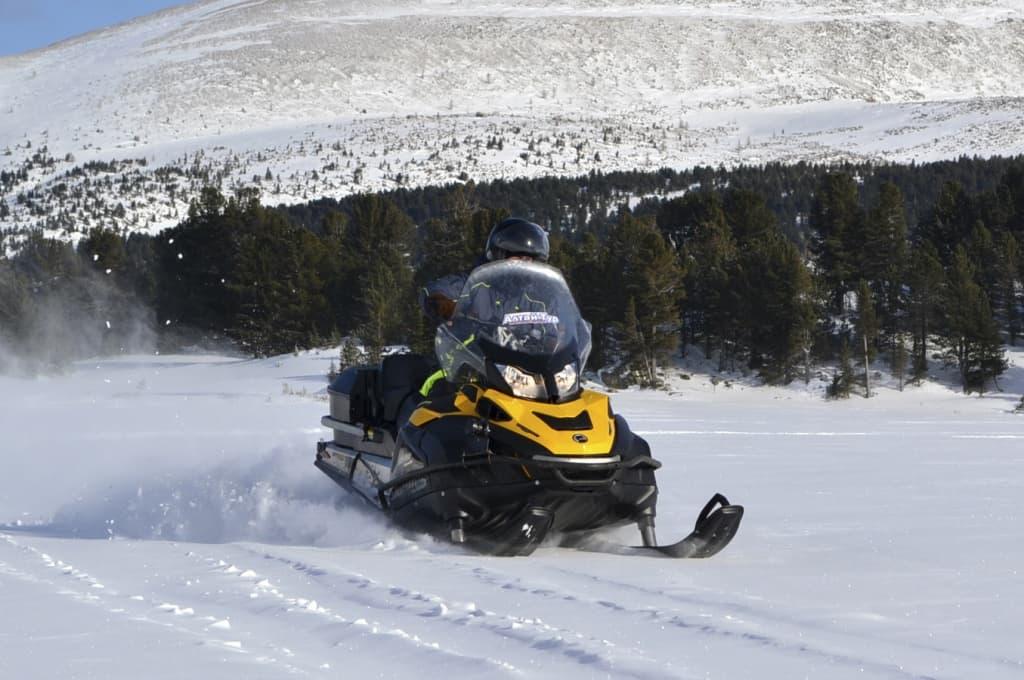 Снегоход Ski-Doo Skandic SWT 600 E-TEC 2014